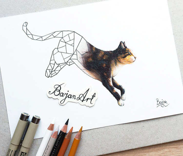 Kitty color drawing by Bajan Art