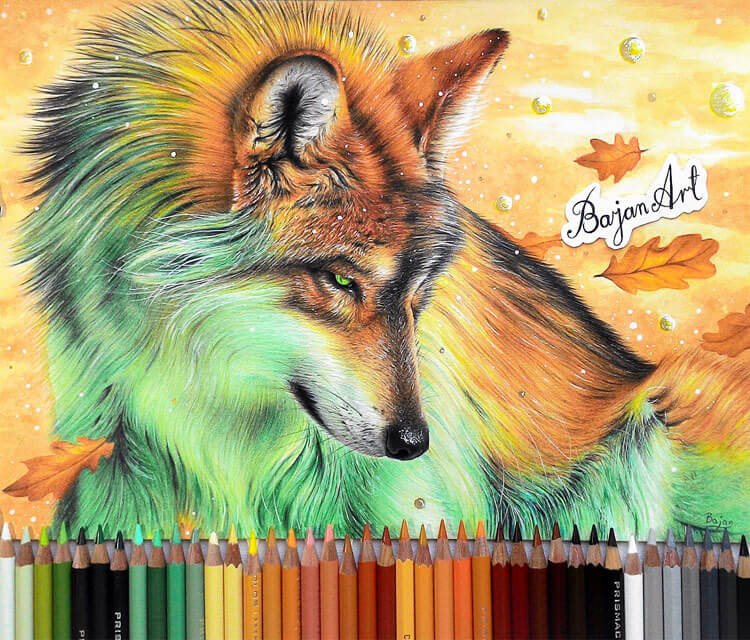 October Fox color drawing by Bajan Art