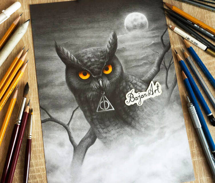 Owl pencil drawing by Bajan Art