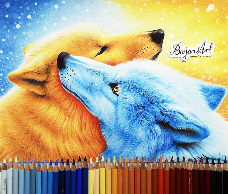 Wolf Love color drawing by Bajan Art