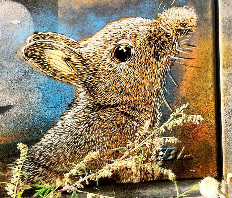 Abstract mouse by C215