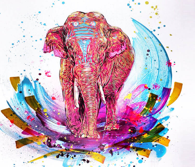 Pink elephant by C215