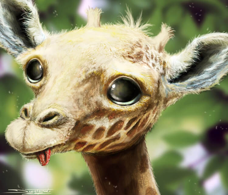 Baby giraffe drawing by Dino Tomic