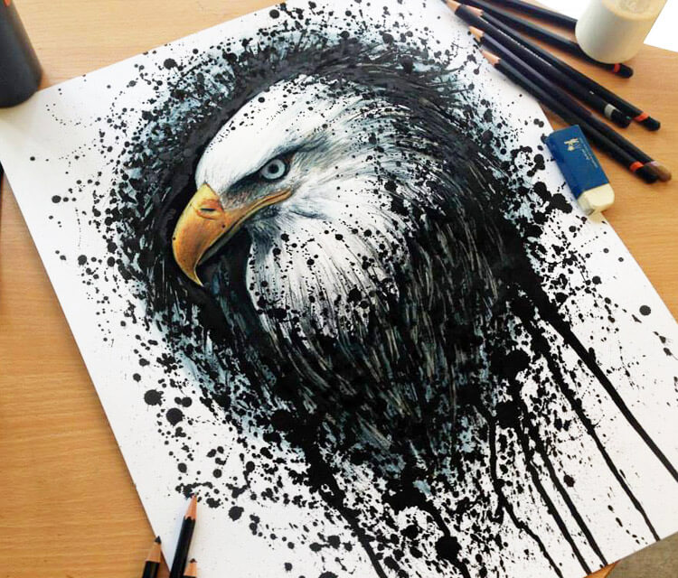 Eagle drawing by Dino Tomic