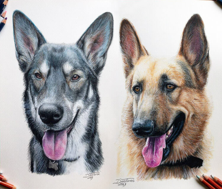 Pencil drawing color drawing by Dino Tomic