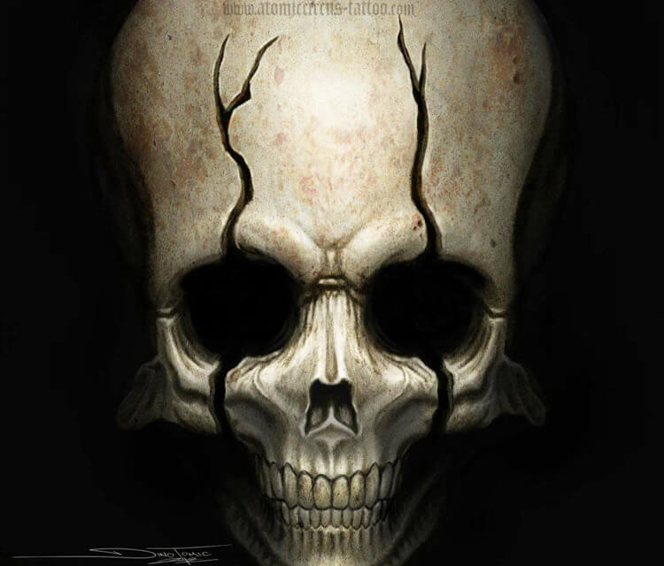 Skull pencil drawing by Dino Tomic