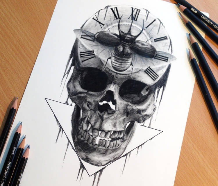 Skull drawing by Dino Tomic
