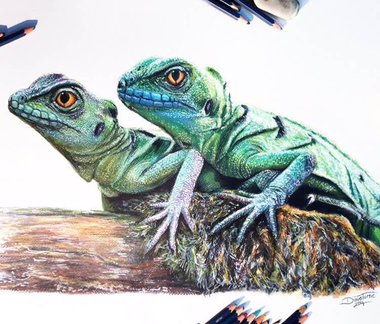 Water dragons drawing by Dino Tomic