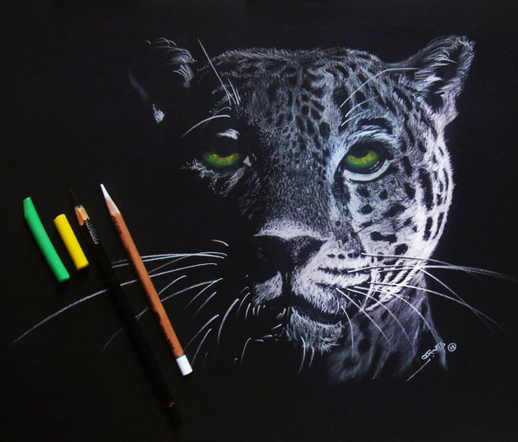 Jaguar with green eyes drawing by Garvel Art