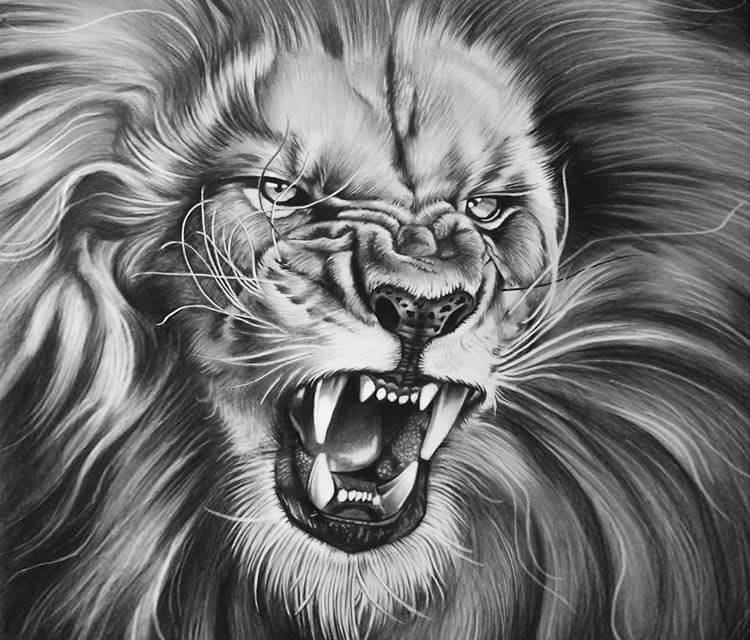 The King Drawing By Garvel Art No 2759 Drawing King