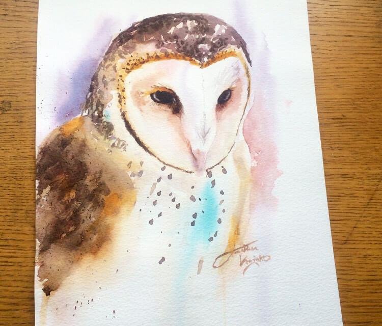 Barn Owl painting by Jonathan Knight Art