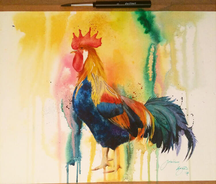 Cock painting by Jonathan Knight Art