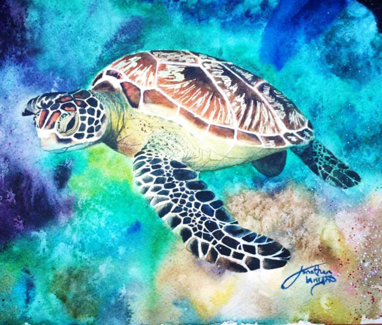 Green sea Turtle mixedmedia by Jonathan Knight Art