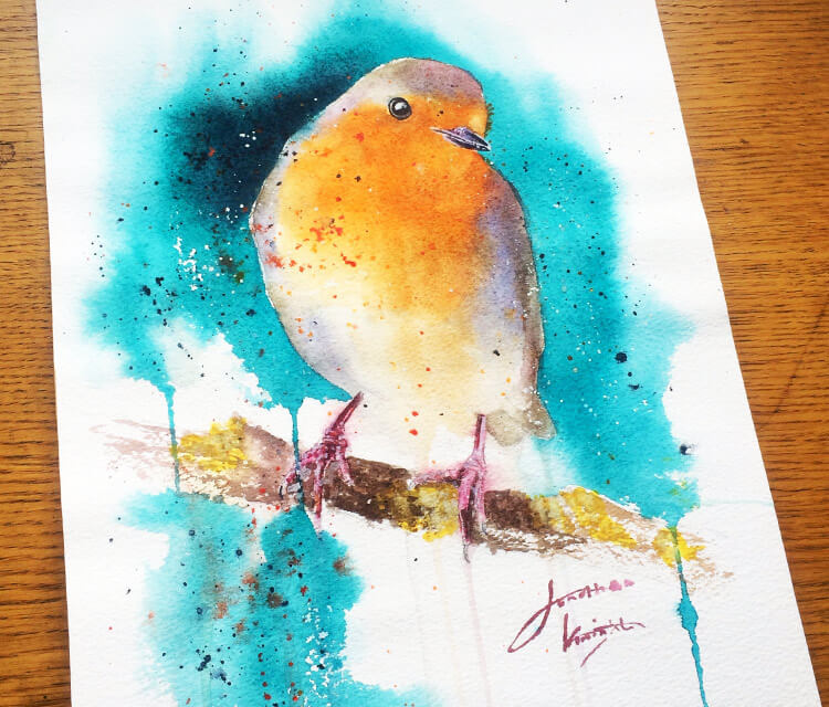 Robin Birds mixedmedia by Jonathan Knight Art