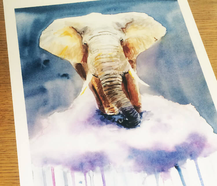 Weightless Elephant painting by Jonathan Knight Art
