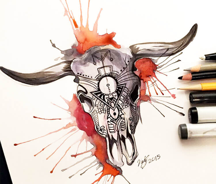 Cow Skull color drawing by Katy Lipscomb Art