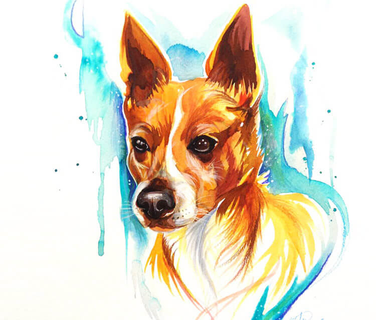 My dog drawing by Katy Lipscomb Art