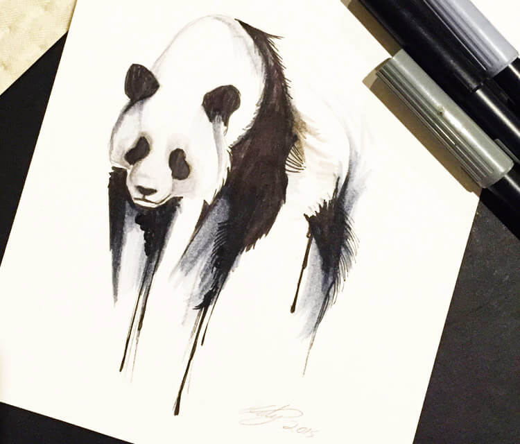 Panda marker drawing by Katy Lipscomb Art