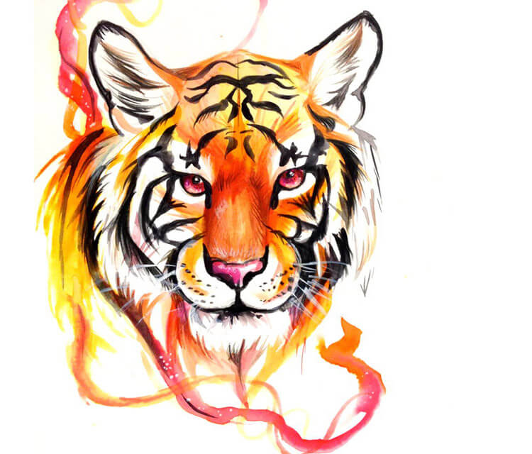 Tiger design color drawing by Katy Lipscomb Art