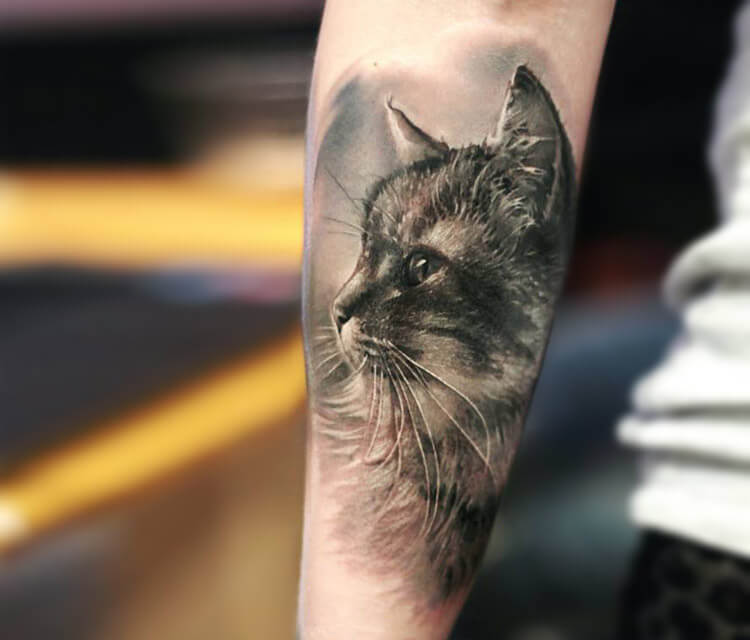 Cat tattoo by Led Coult