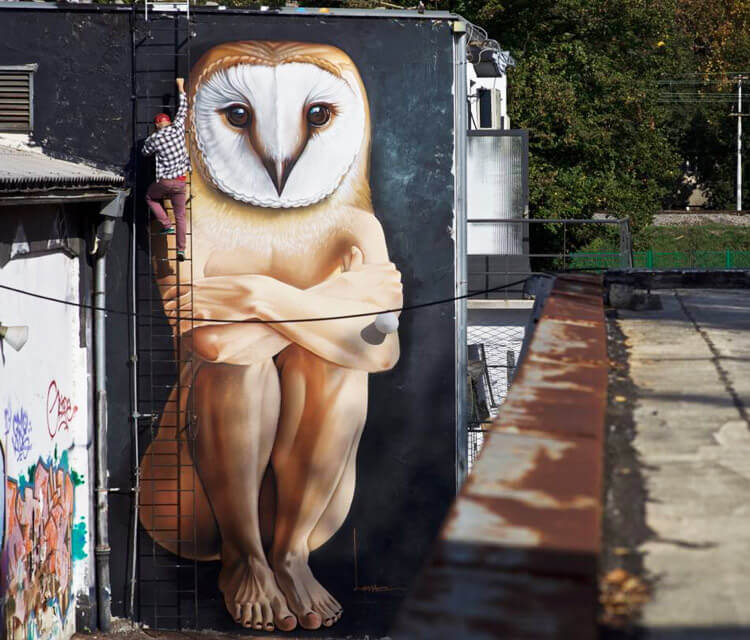 Owl man streetart by Lonac Art