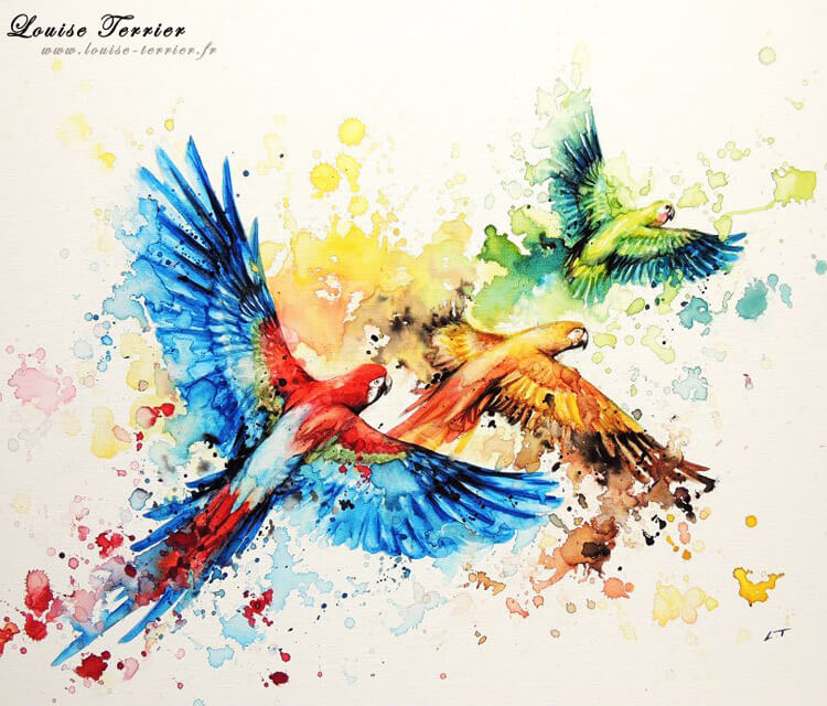 Parrots birds Watercolor by Louise Terrier