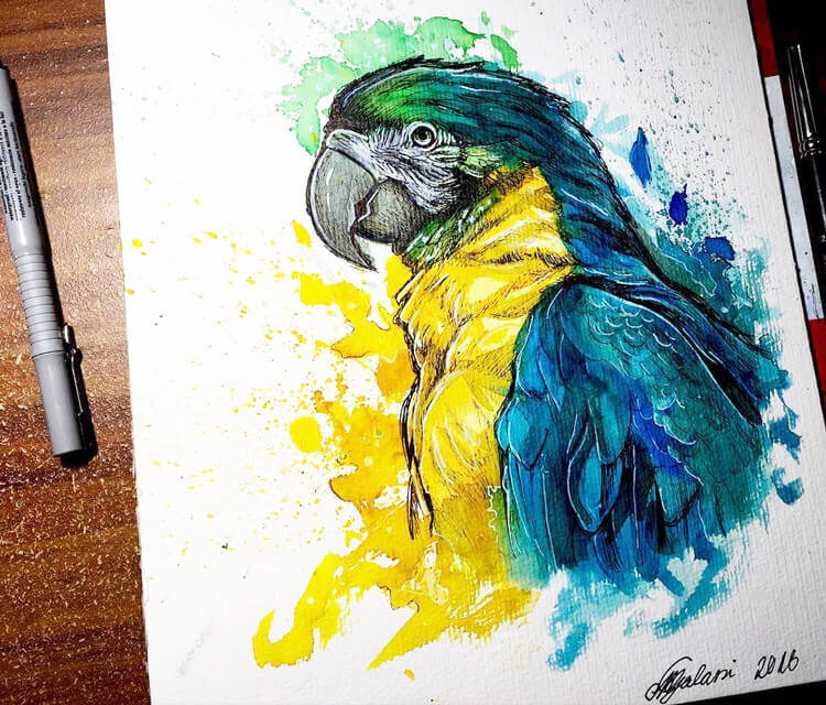 Parrot watercolor painting by Miriam Galassi