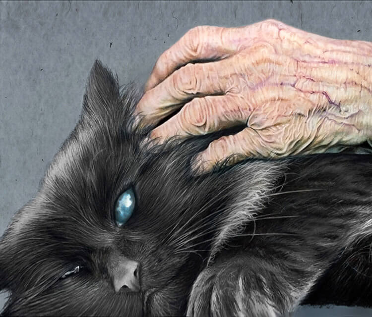 Cat and hand drawing by Morgan Davidson