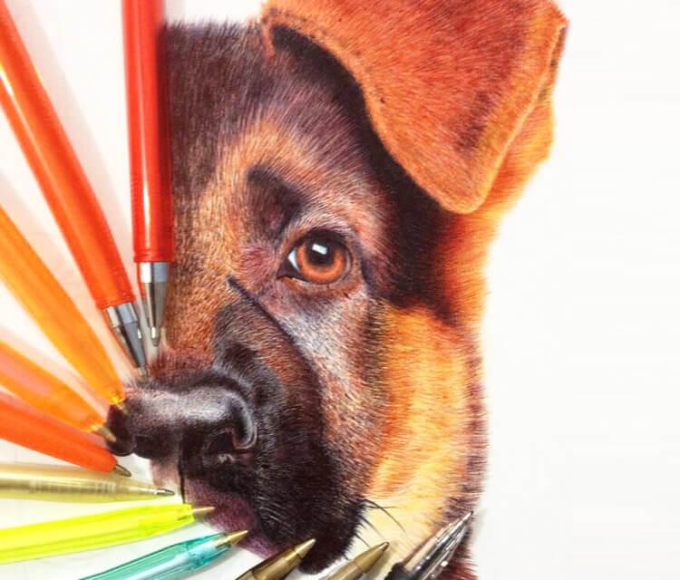 Doggy in progress pen drawing by Mostafa Mosad Khodeir