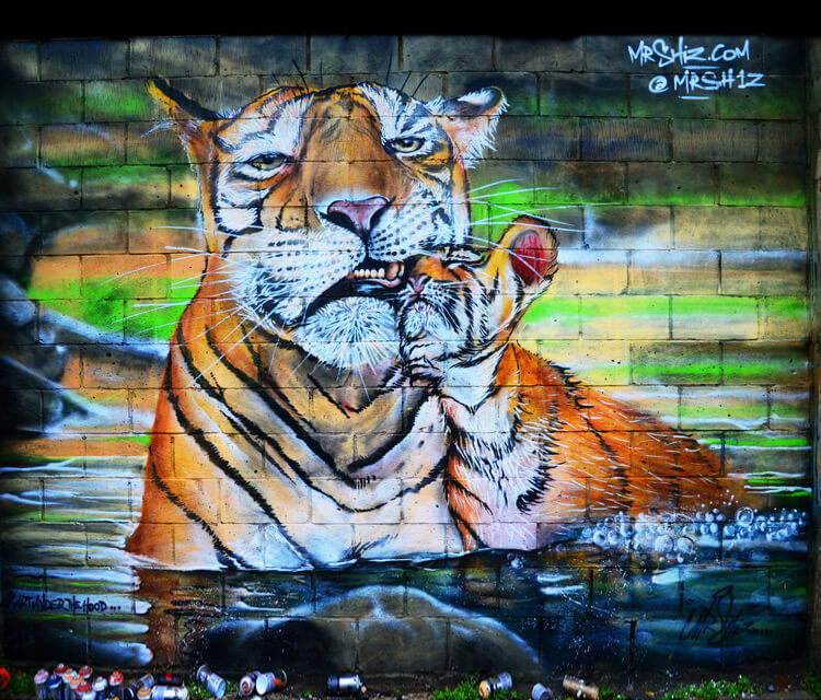 Tiger street art by Mr Shiz