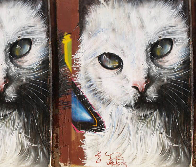 Cat mural streetart by Pichi and Avo