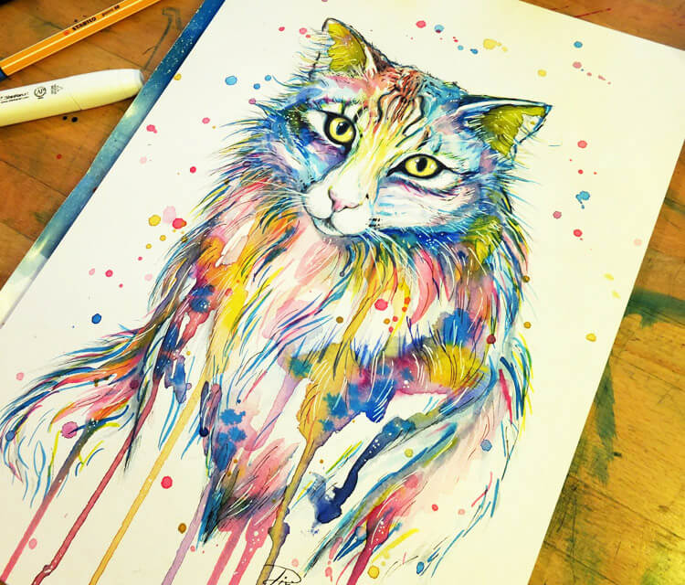 My Cat drawing by Pixie Cold