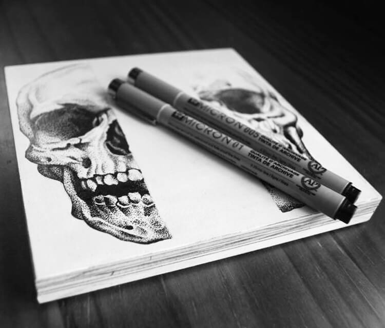 Half Skulls drawing by Sneaky Studios