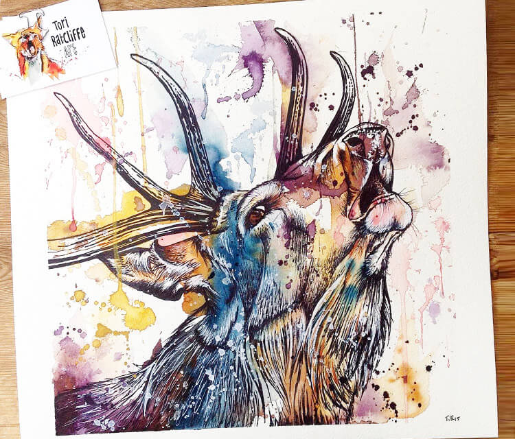 Deer watercolor painting by Tori Ratcliffe Art