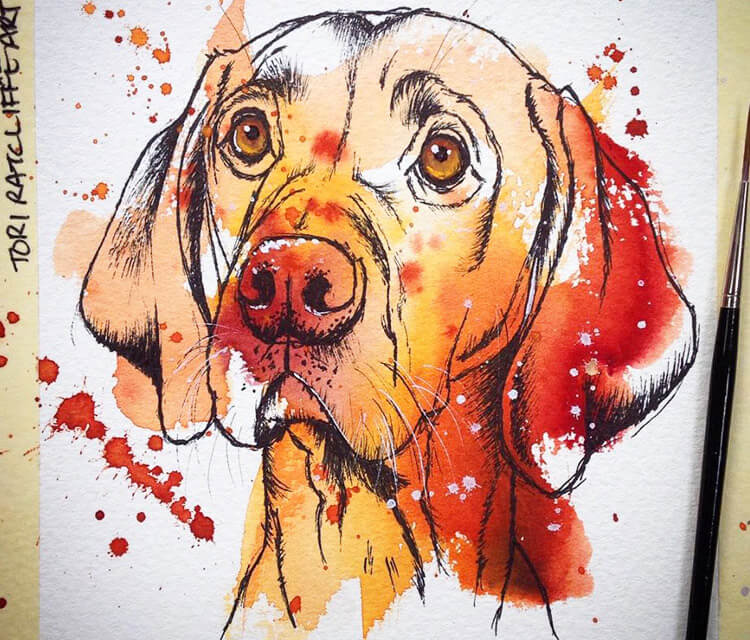 Hungarian Vizsla watercolor painting by Tori Ratcliffe Art