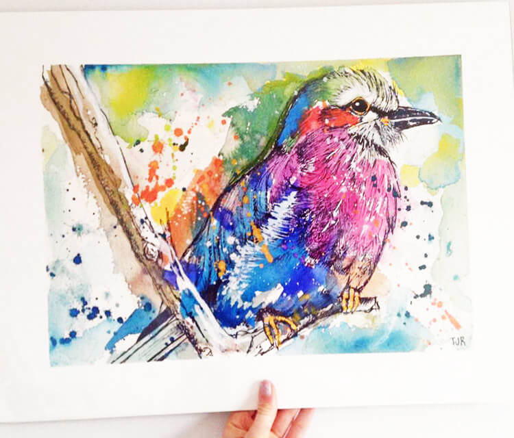 Lilac breasted Roller by Tori Ratcliffe Art