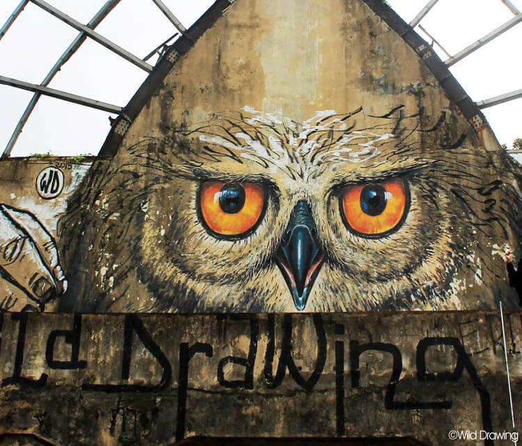 Owl self streetart by Wild Drawing