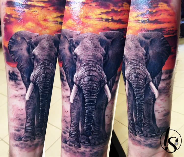 African elephant tattoo by Zsofia Belteczky