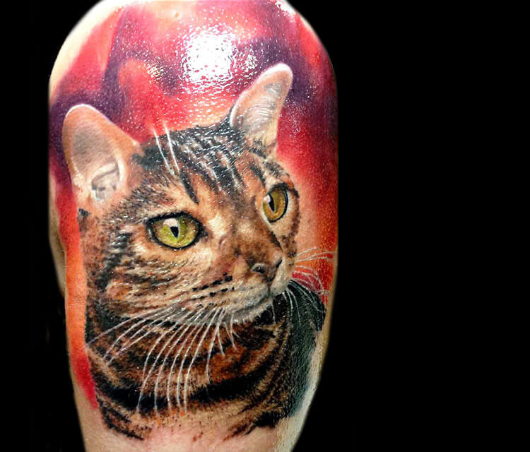 Cat tattoo by Zsofia Belteczky